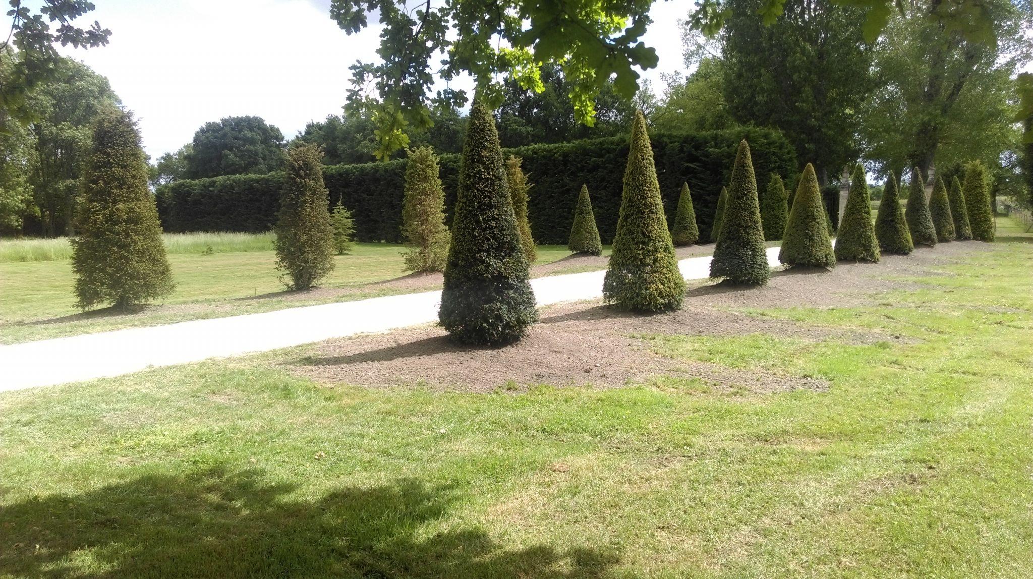Puyau Paysagiste Gironde Plantations