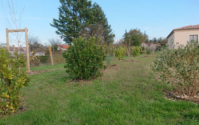 Plantations d'automne