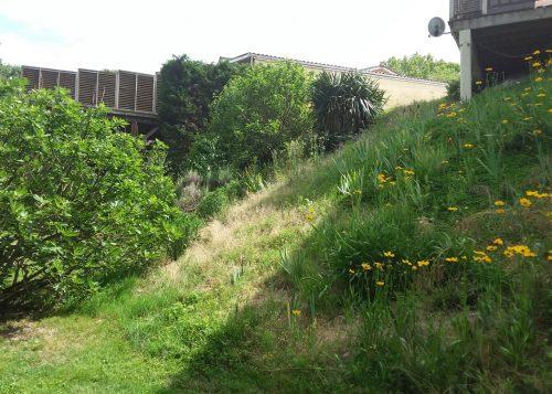 Puyau Paysages-aménagement talus